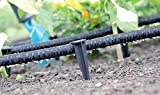 Zoom IMG-1 gardenix 100 picchetti aquapeg di