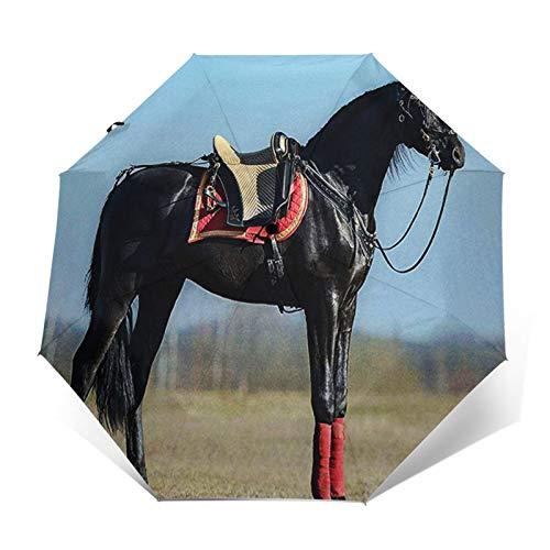 Regenschirm Taschenschirm Kompakter Falt-Regenschirm, Winddichter, Auf-Zu-Automatik, Verstärktes Dach, Ergonomischer Griff, Schirm-Tasche, Schwarzes andalusisches Pferd
