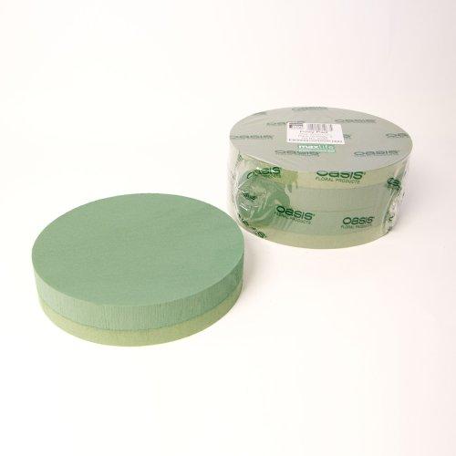OASIS Lot de 2 tampons en Mousse de 25,4 cm de diamètre.