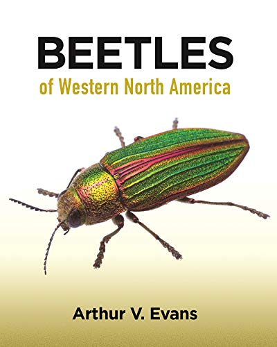 Compare Textbook Prices for Beetles of Western North America  ISBN 9780691164281 by Evans, Arthur V.