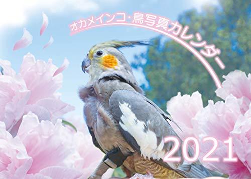 【Amazon.co.jp 限定】オカメインコ鳥写真カレンダー2021 (B6サイズ。ワンタッチで卓上にも壁掛けにもなる3Wayカレンダー)