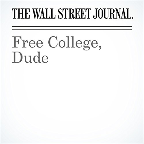 Free College, Dude audiobook cover art