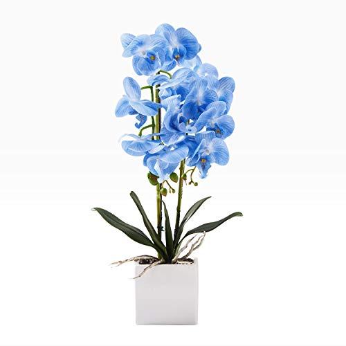 Alicemall Flor Artificial Iris Japonica Thunb Flor Decorativo de la Oficina Casa Decoración Simulación Planta Falsa en Maceta 15x15x50 cm (Azul)