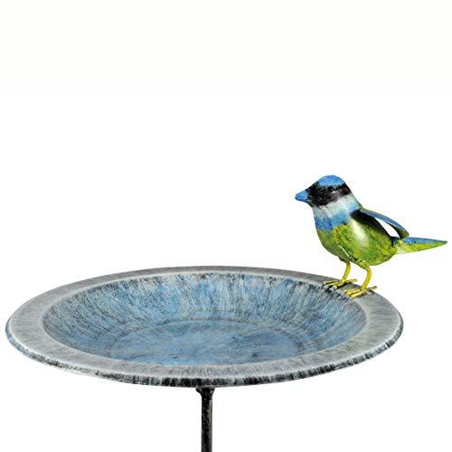 Dalhoff Wetterfeste Vogeltränke/Vogelfutterplatz Blaumeise von Medusa | 100x31x25 cm