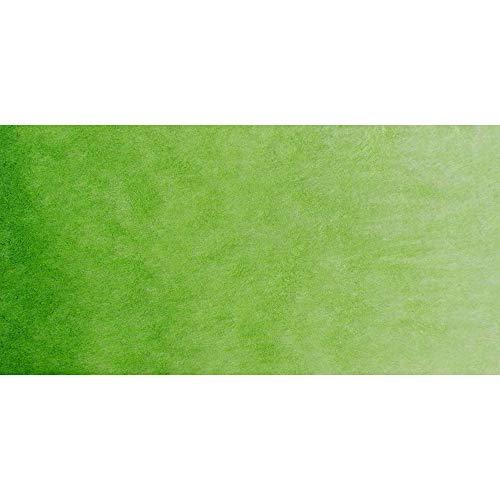 St Petersburg : White Nights : Watercolour Paint : Full Pan : Sap Green