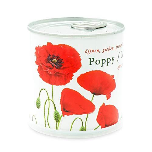 MacFlowers Coquelicots - Fleurs dans une boîte.