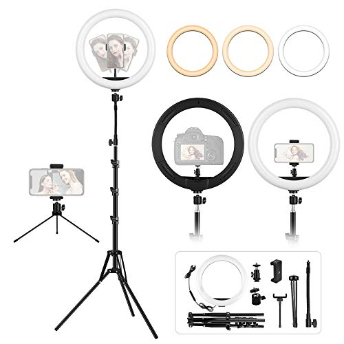 LED Ring Light with Tripod and Desk Stand, 12.6 inch Adjustable Circle Light with Extendable Tripod 69', USB Powered, Heighten Hose, Phone Holder for iPhone Streaming, Video Recording, Camera