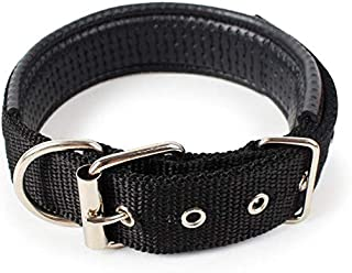 Pet Products Double Durable Ply Clear Pet Collar-Black
