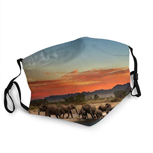 Manada de elefantes al atardecer en la sabana africana bandana para la cara, cuello, bufanda para la cara, polvo, resistente al viento, transpirable, pesca, senderismo, correr,...