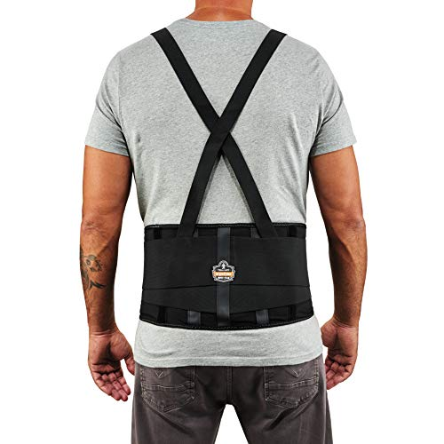 Ergodyne ProFlex 100 Back Support Brace, 8