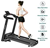 Dolphy 2.0 HP Motorized Folding Treadmill with LCD Display for Your Fitness Workout