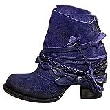 ZYLL Zapatos de Moda de Las Mujeres Cargadores del Tobillo de la Vendimia de la Nieve Botas Punta Redonda Cremallera Trasera Baja Botas del Motorista del Tobillo Botas de Ante,Azul,43