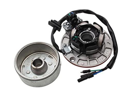 TTRS Store Magneto Stator Kit de Rotor sin Ajuste Ligero para yinxiang yx 140cc 150cc 160cc Motor de Suciedad Bicicleta kayo BSE SDG SSR GPX PitterPro (Color : 1 Set)