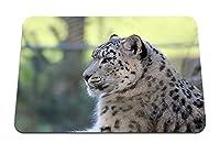 26cmx21cm マウスパッド (ユキヒョウの横になっている捕食者が満足) パターンカスタムの マウスパッド