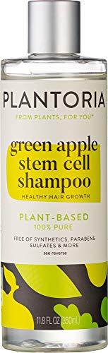 Plantoria Green Apple Stem Cell Shampoo | Plant Based Pure Vegan Organic Hair Growth Shampoo for Women, Men, Teens, Kids| Natural Hair Shampoo With Seaweed, Aloe Vera, Swiss Apple, Tea Tree & More