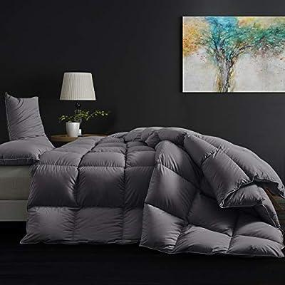 SNOWMAN All Seasons Goose Down Comforter King Size,Medium Warmth Fulffy Duvet Insert,100% Egyptian Cotton Shell Down Proof Fabric - 750 Fill Power (King,Grey)