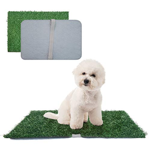 indoor pads for dogs to pee