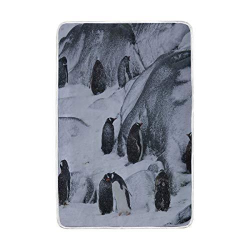 DOSHINE Zwillings-Decke, Emperor Pinguin Tier, weich, leicht, wärmend, 152,4 x 228,6 cm, für Sofa, Bett, Stuhl, Büro