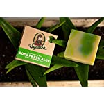 Dr. Squatch Men's Soap Variety Pack – Manly Scent Bar Soaps: Pine Tar, Gold Moss, Cedar Citrus, Bay Rum, Cool Fresh Aloe… 7