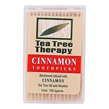 Cinnamon Tea Tree Toothpicks 100 count By Tea Tree Therapy - 12 Pack