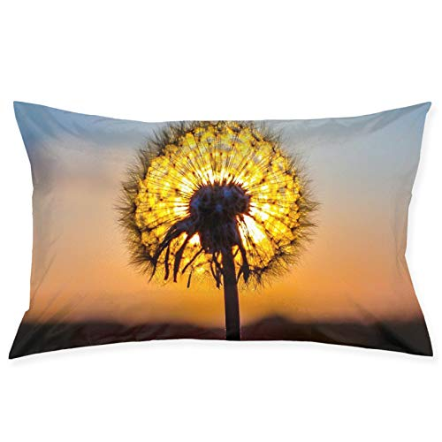 Pillow Case 20' X 30' Dandelion Sunset Washable Soft Zippered Pillowcase Covers Decorative for Sofa, Couch, Bed and Car