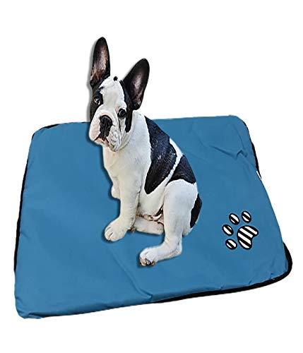 Ducomi Paco Tappetino Cane 55 x 75 cm - Cuccia in Morbido Pile e Caldo Rivestimento e Base Antiscivolo - Materassino per Cani di Piccola e Media Taglia da Interno (Light Blue)