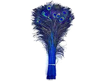Best wholesale peacock feathers bulk Reviews