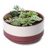 Large Plant Pot - 10.5 Inch Round Half Glazed Surface Ceramic Planter with Saucer and Drainage Hole
