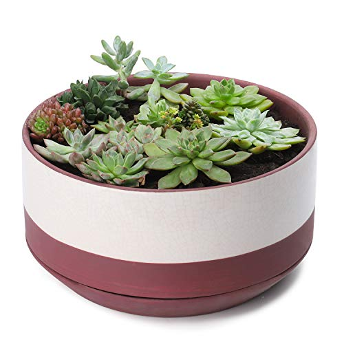Greenaholics Large Plant Pot - 10.5 Inch Ceramic Planter with Glazed Surface for Indoor Planting with Saucer, Red
