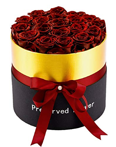 Hannah Forever Roses That Last A Year | Box of Roses | Preserved Eternal Roses | Infinity Roses | Premium Real Roses | Handmade Long Lasting Roses | Roses in Round Black Gift Box (19, Wine Roses)