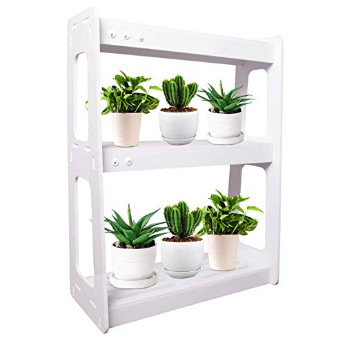 Indoor Herb Garden with Grow Light, Kitchen Garden with Timer Function, Home Planter Kits for Herbs, Succulents, Vegetables, 2 Layers