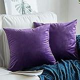 AShanlan Samt Kissenbezüge Kissenhülle 60x60 cm 2er Set Lavendel Lila Dekorative Kissenbezug für...