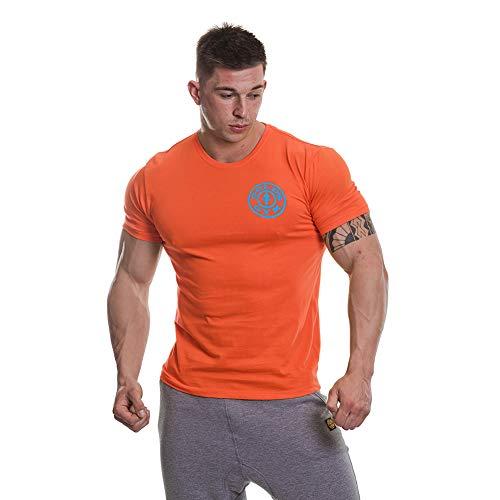 Gold's Gym Camiseta básica para Hombre, con Logotipo, Hombre, Camiseta básica de Calidad de Entrenamiento para Hombre con Logotipo, GGTS001_ORTUR_S, Naranja/Turquesa, S