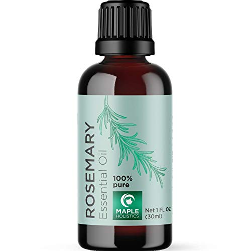Pure Rosemary Essential - 100% Natural & Therapeutic Grade - Hair Growth, Scalp and Memory Benefits for Women and Men - 1oz - Guaranteed By Maple Holistics by Maple Holistics