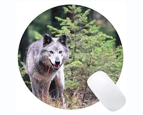 Yanteng Gaming Mouse Mat,Animal Wolf Wild Mousepad Nonslip Rubber Backing