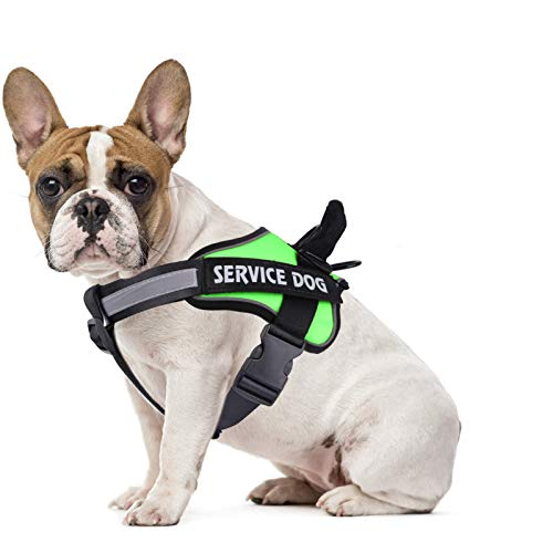MUMUPET Dog Harness No-Pull Reflective Breathable Adjustive Pet Vest with Handle for Outdoor Walking Upgraded Material with Glowing in The Dark.Makes Your Puppy Sparkle.