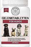 Petgold 120 Gelenktabletten Hund – Hoch konzentrierte Hunde Tabletten für Gelenke – Grünlippmuschelpulver MSM & Teufelskralle – Gelenk Tabletten für Hunde