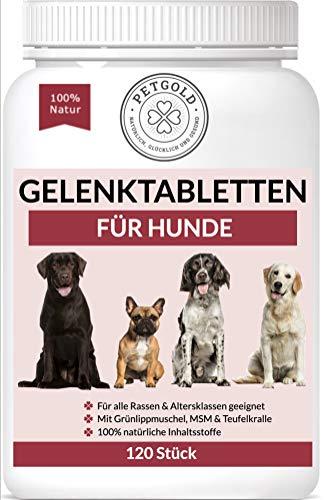 Fj Gesund Und Glücklich GmbH -  Petgold 120