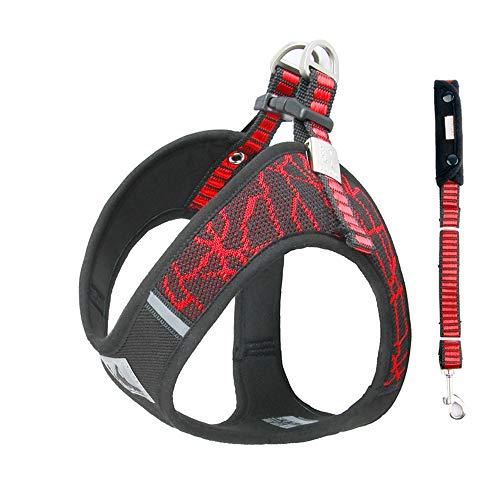 BlingRoKi No Pull Dog Harness Leash Set Adjustable Puppy Walking Halter Harnesses for Terrier,French Bulldog,Westie,Lab(Red/Set,L)