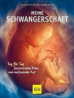 Scholz, A: Meine Schwangerschaft