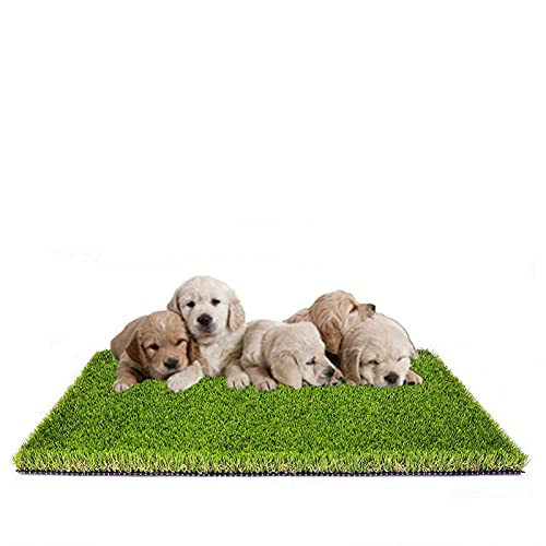 MTBRO Dog Grass Pee Pads, Professional Dog Grass Mat Replacement for Potty Trainer