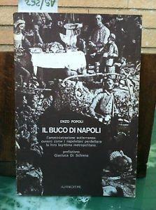 Il buco di Napoli : l'amministrazione sotterranea, ovvero come i napoletani perdettero la loro legittima metropolitana ; prefazione di Gianluca Di Schiena