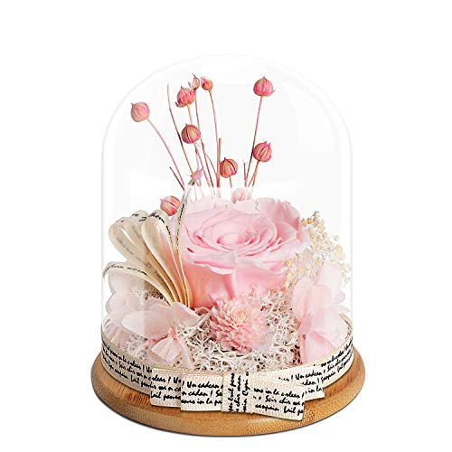 KING DOO Handmade Preserved Real Rose, Upscale Exquisite Gift Flowers, Eternal Life...
