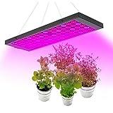 SOAR Lámpara de Plantas Crecimiento 100W LED crece la luz for plantas de interior Full Spectrum Con ajustable Interruptor Bloom y verduras, cadena creciente de la lámpara con la margarita Planta 2Ft d