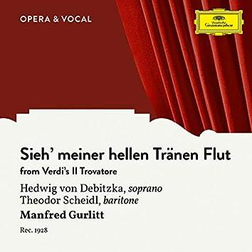 Verdi: Il Trovatore: Sieh' meiner hellen Tränen Flut (Sung in German)