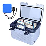 Yclty 12/19L Profession Insuline Glacière Voyage Médecine Congélateur Mini Frigo Réfrigérateur Cas Diabétique Insuline Glacière Boîte Soutien Maison Prise de Voiture