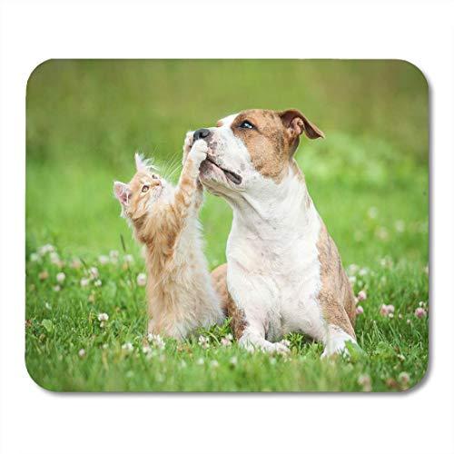 Alfombrilla para ratón con diseño de Gato Rojo y Gatito Jugando a Staffordshire Terrier para portátiles, Ordenadores de Escritorio, Alfombrillas para ratón, 25 x 30 cm