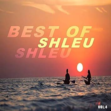 Best of shleu shleu (Vol.4)
