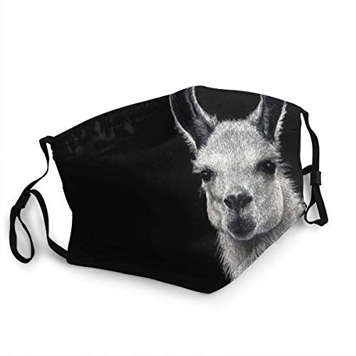 Mundschutz Hipster Llama Windproof Face Cover, wiederverwendbares, waschbares Tuch, Face Cover