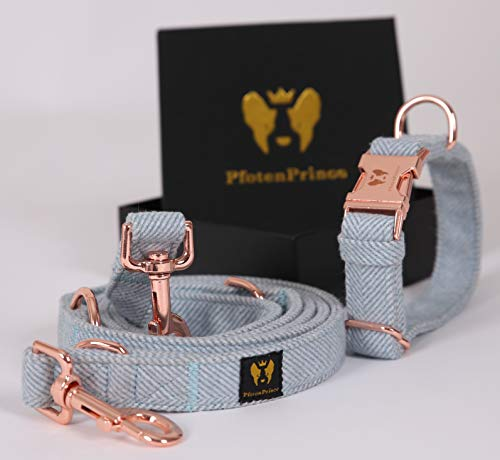 PfotenPrince Set Hundehalsband + Hundeleine (2m) mit verstellbaren Ringen für kleine & große Hunde I Deluxe Design aus weichem Baumwollgewebe Blau (M)